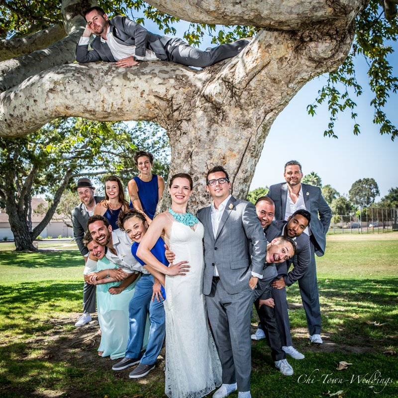 Wedding Party around and in a tree
